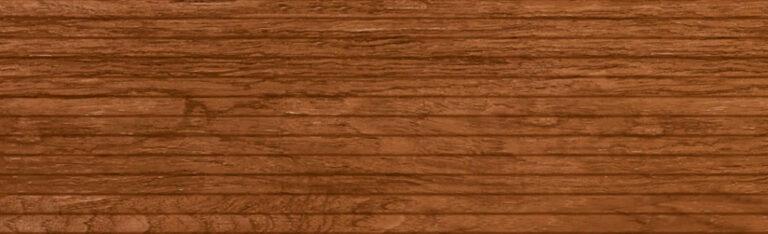 AMAZONIA 20.2x66.2