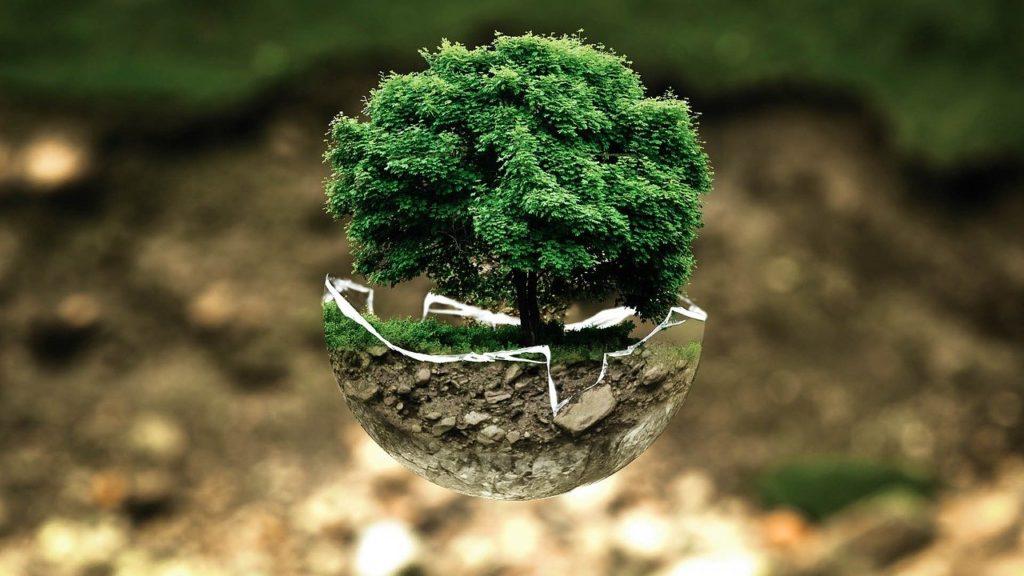 carrelage-ecologique